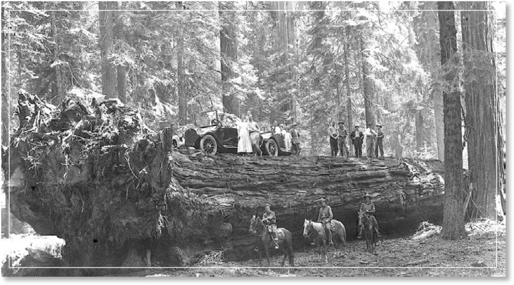 Historic Photo from the Foundation Document of Sequoia and Kings Canyon National Parks