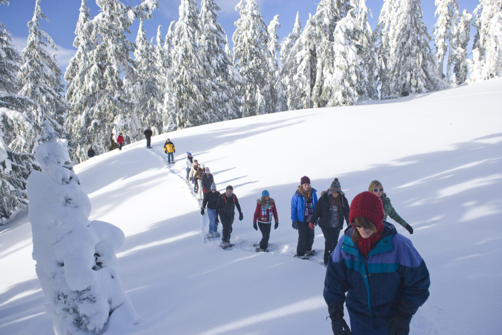 Visitors on snowshoes walk through the snowy forest
