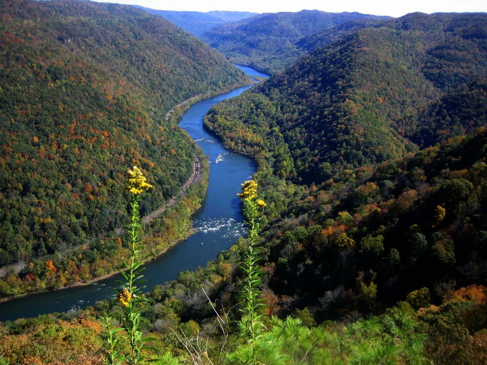 A view of deep, forested gorge with hints of fall colors and the New River flowing through the center.