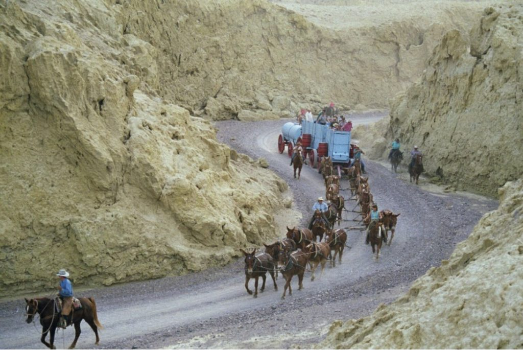 20 Mule Team Completing Curve during Reenactment.