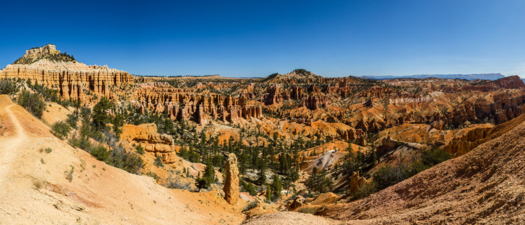 a panorama of the hoodoos and canyons filled with trees at Bryce Canyon National Park