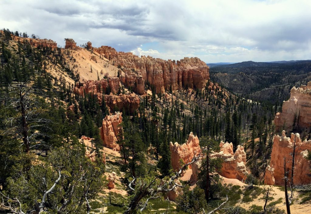 View of Swamp Canyon
