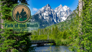 A bridge over a creek with trees on the sides and a view of mountains in Grand Teton National Park