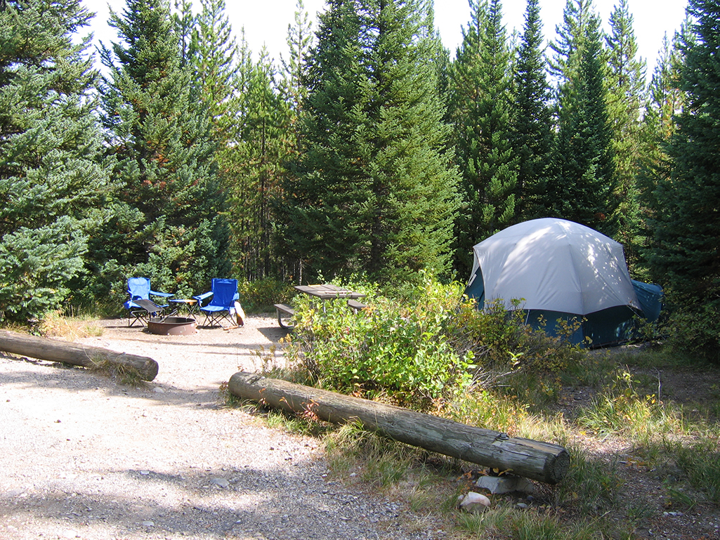 Stay at the Colter Bay Campground.